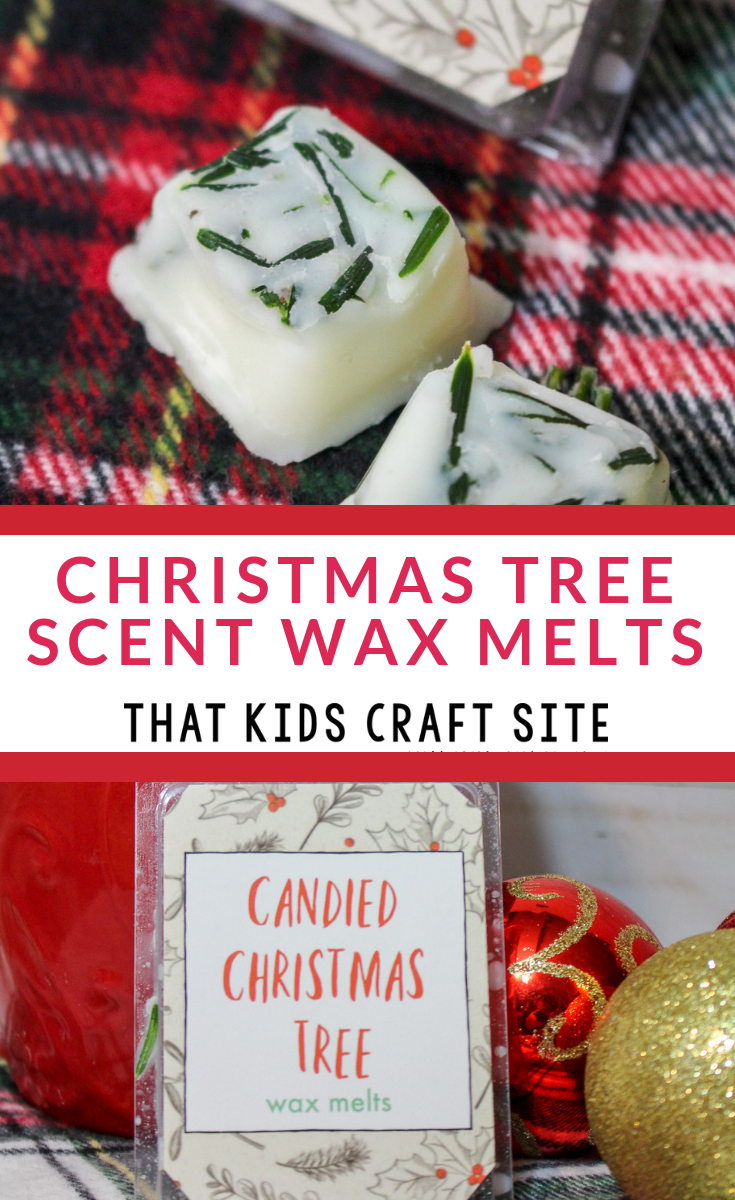 DIY Christmas Tree Scent Wax Melts Craft for Teens - ThatKidsCraftSite.com