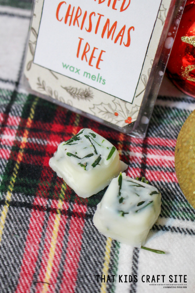 DIY Christmas Tree Pine Wax Melts - ThatKidsCraftSite.com