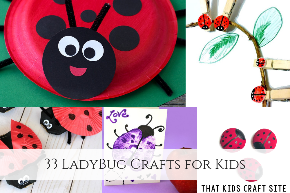 33 Ladybug Crafts for Kids