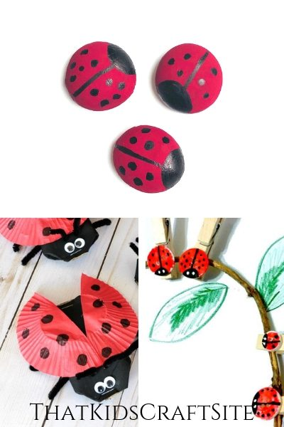 33 of the Cutest Ladybug Crafts for Preschoolers - ThatKidsCraftSite.com