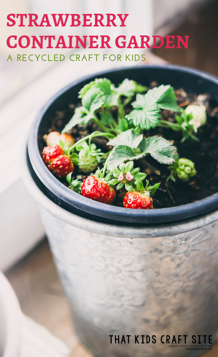 Strawberry Container Garden Recycled Craft - Recycled Crafts for Kids - ThatKidsCraftSite.com