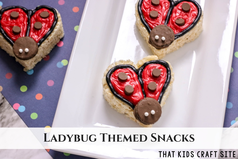 Adorable Ladybug Themed Snacks for a Ladybug Birthday Party - ThatKidsCraftSite.com