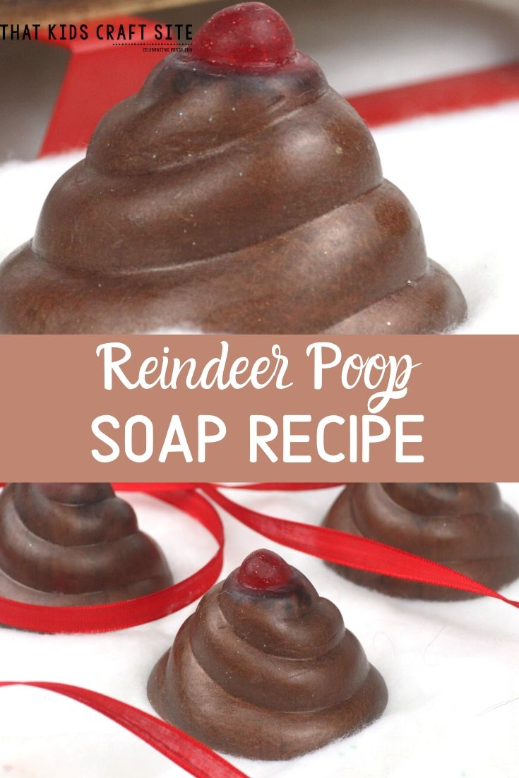 DIY Reindeer Poop Recipe for Soap - ThatKidsCraftSite.com