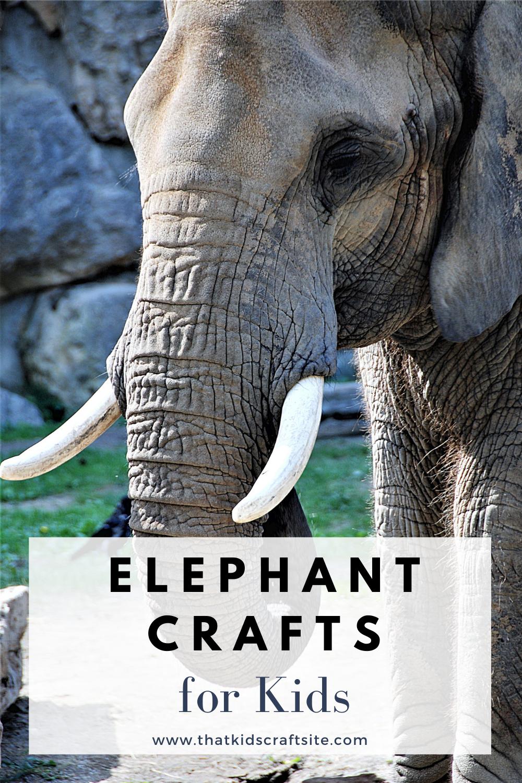 Elephant Crafts for Kids